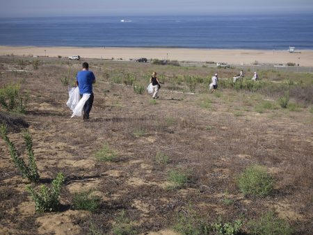 LAX Dunes overlooking Dockweiler State Beach